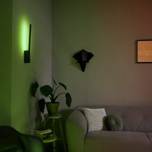 Philips HUE Liane  wall lamp black 1x12W 24V